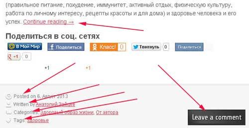 Не переведенная тема WordPress