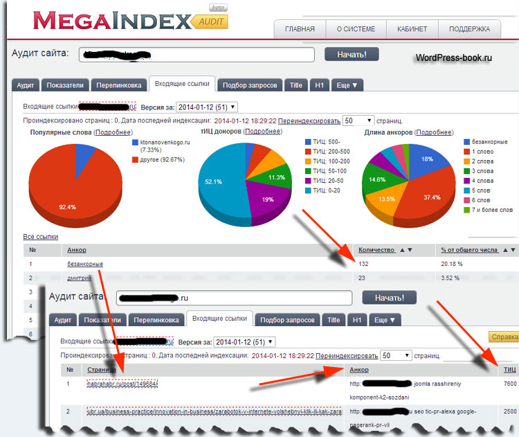 Анализ ссылочной массы сайта конкурента на megaindex