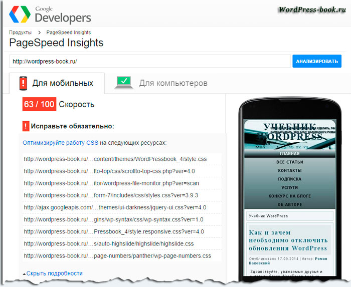 PageSpeed-Insights-css