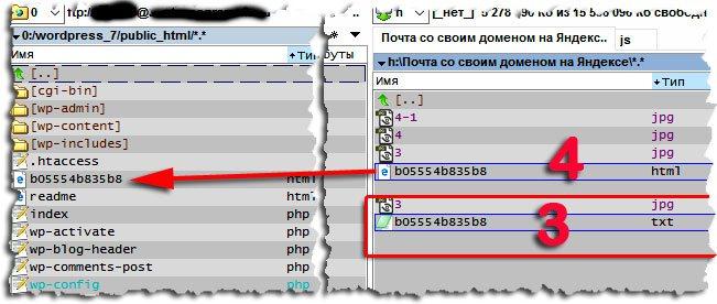 текстовый файл с расширением html